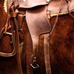 Почему ковбоев часто называют «сраными»? Происхождение слов «говно» и «ковбой»